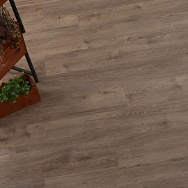 Виниловый ламинат Green-Flor Oak privilege - warm grey